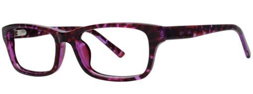 Cades plum and tortoise eyeglass frames