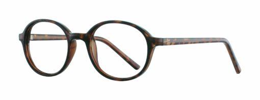 Lena tortoise eyeglass frames