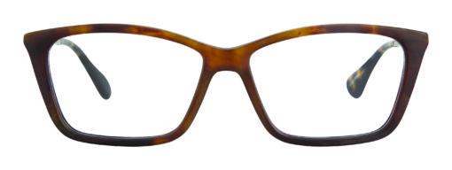 Pratt tortoise eyeglass frames