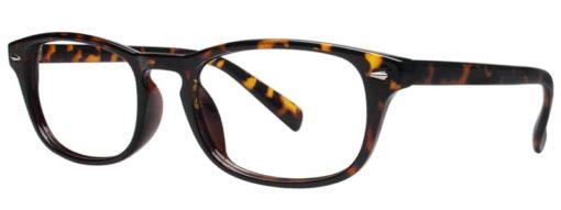 Harper tortoise eyeglass frames from side