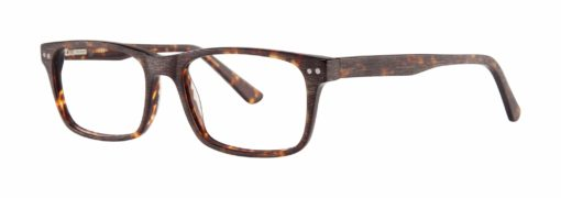 Purdy tortoise eyeglass frames