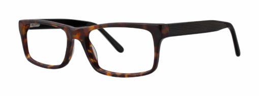 Jonestown tortoise and black eyeglass frames