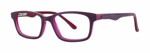 Ames plum matte and fuchsia eyeglass frames
