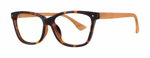 Andes tortoise eyeglass frames