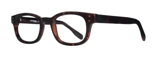 Owen Tortoise Framed Eleglasses