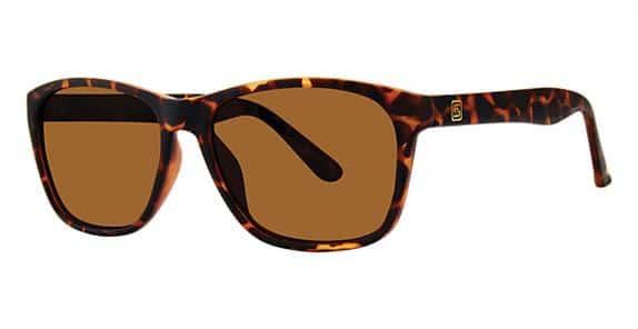 Hartford Tortoise Eyeglass Frames
