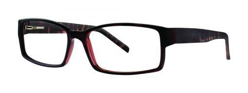 Harris tortoise eyeglass frames